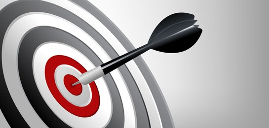 target market sml - Success Target
