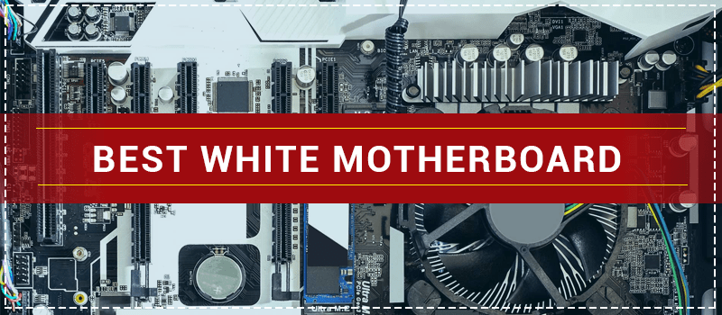 White Mother Board - White-Mother-Board