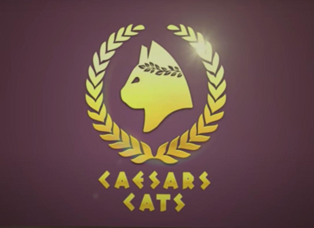 Caesars for Cats